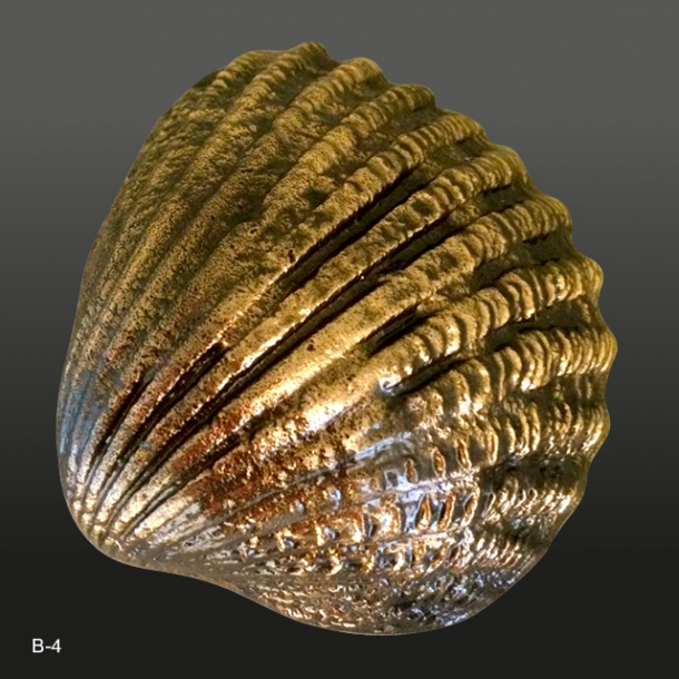 Bronze musling<br>7x2,5 cm